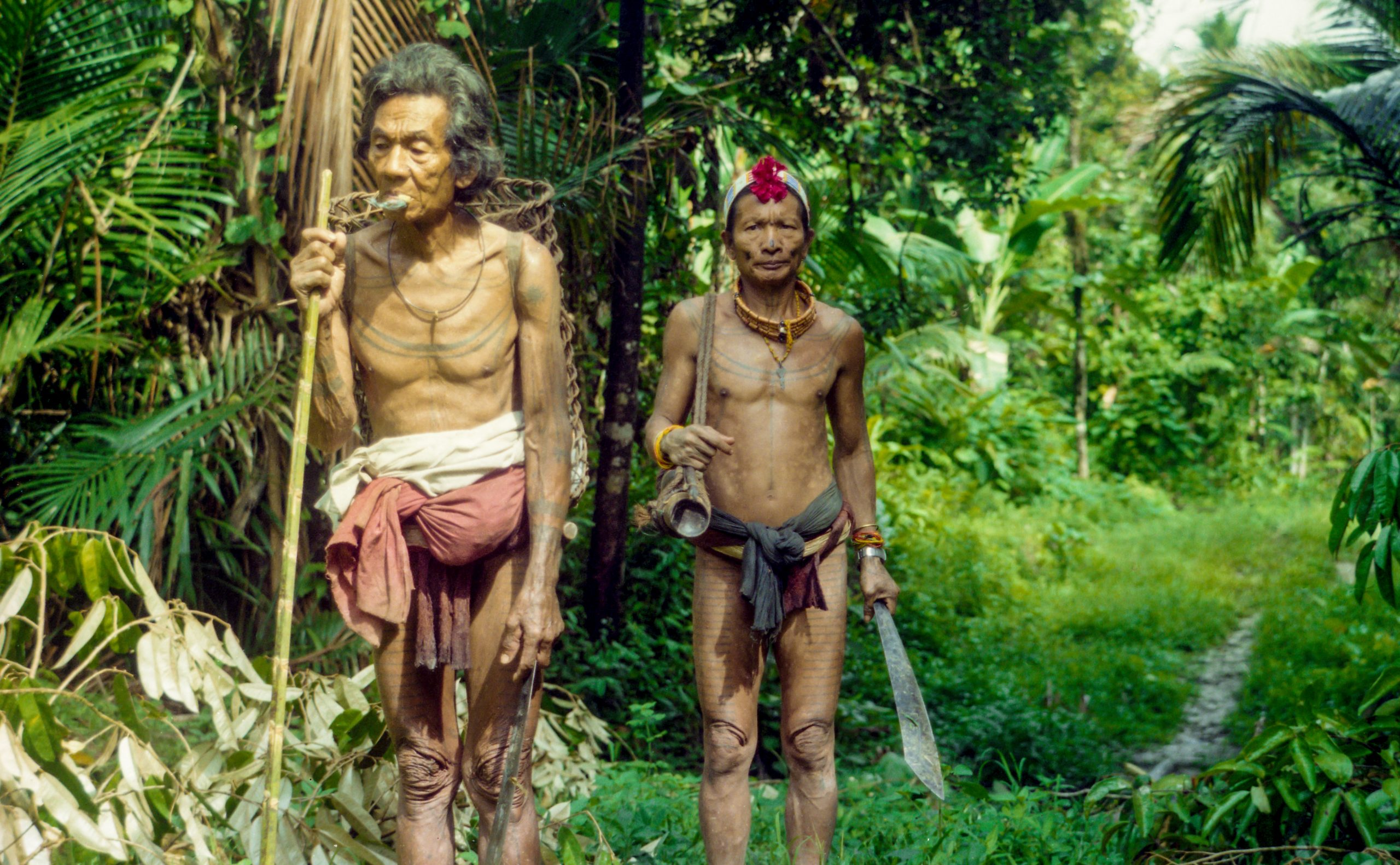 Siberut Island, Sumatra, Indonesia, Asia