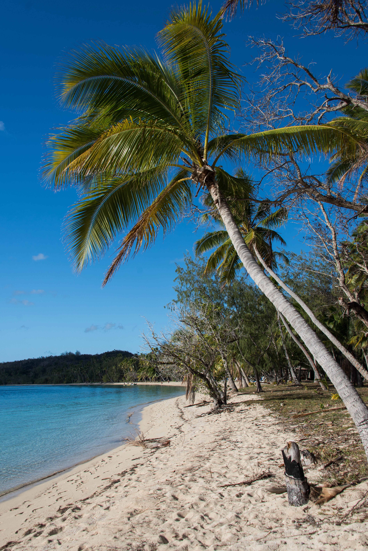 Nanuya Sewa, Fiji, Oceania