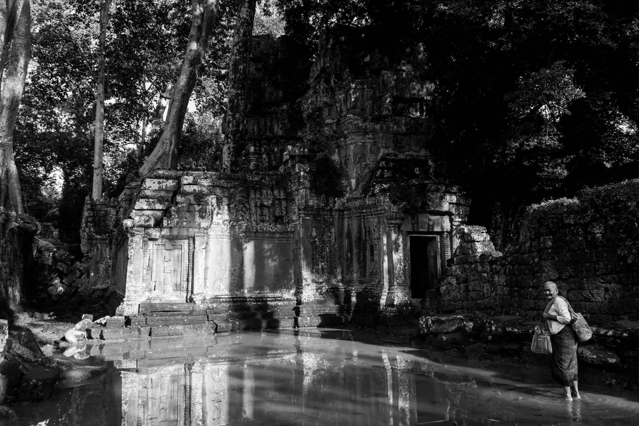 Ta Prom, Siem Reap, Cambodia, Asia