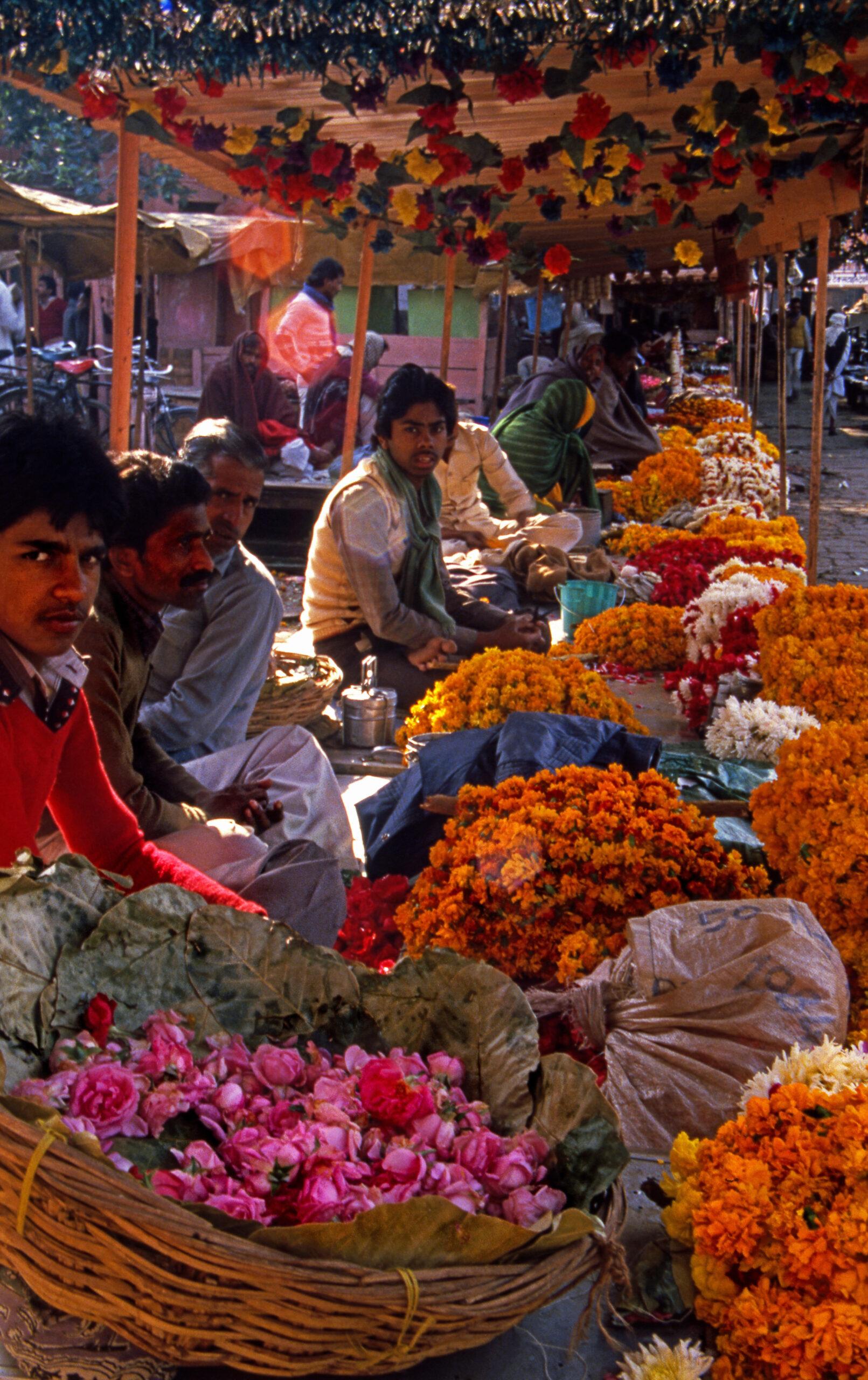 Flower Market, Jaipur, Rajasthan, India, Asia
